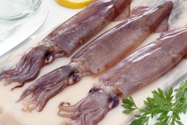 squid sextoy handmade